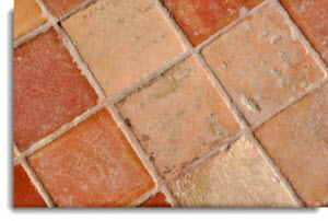 Stone Cleaning Adelphia Terracotta Grout Cleaning Services